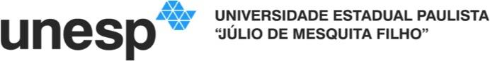 UNESP medizinische Praktika Brasilien